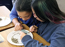 Image of two students dissecting owl pellets